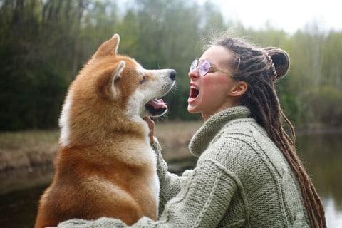 sone con perros significado