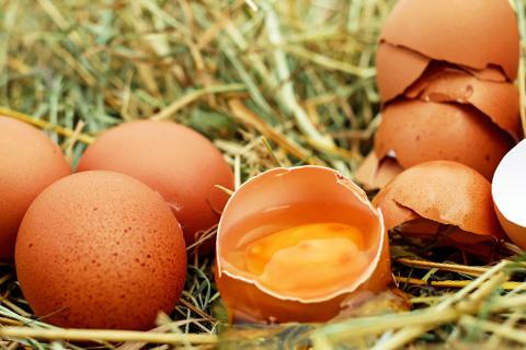 sonar-con-huevos
