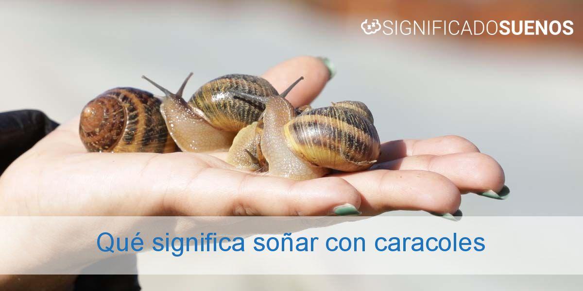 Qué significa soñar con caracoles