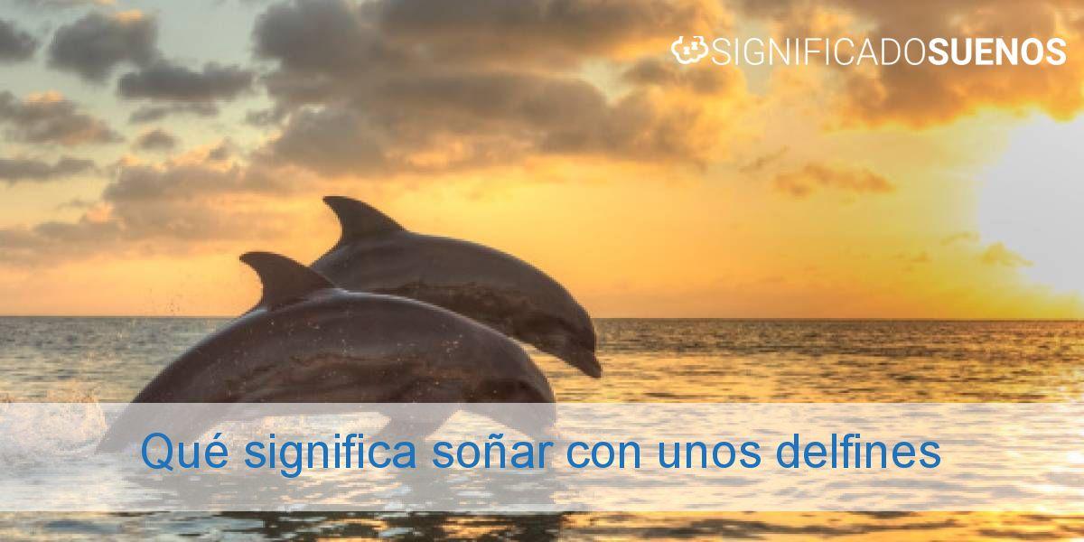 Qué significa soñar con unos delfines