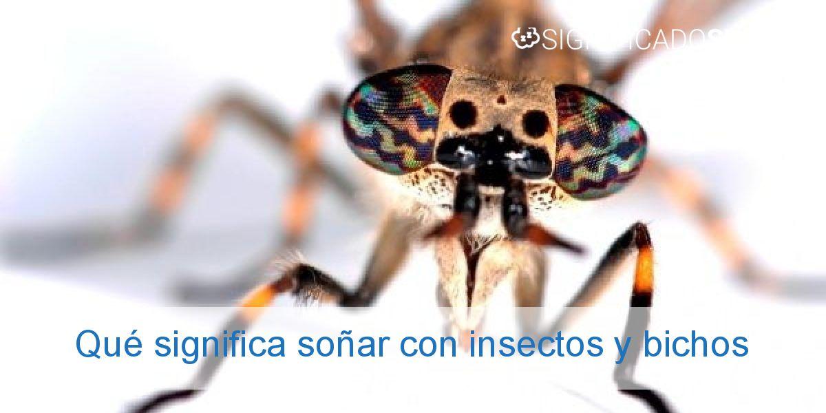 Qué significa soñar con insectos y bichos