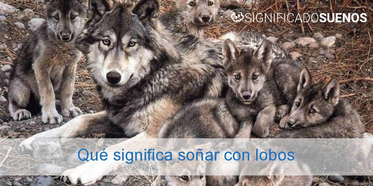 Qué significa soñar con lobos