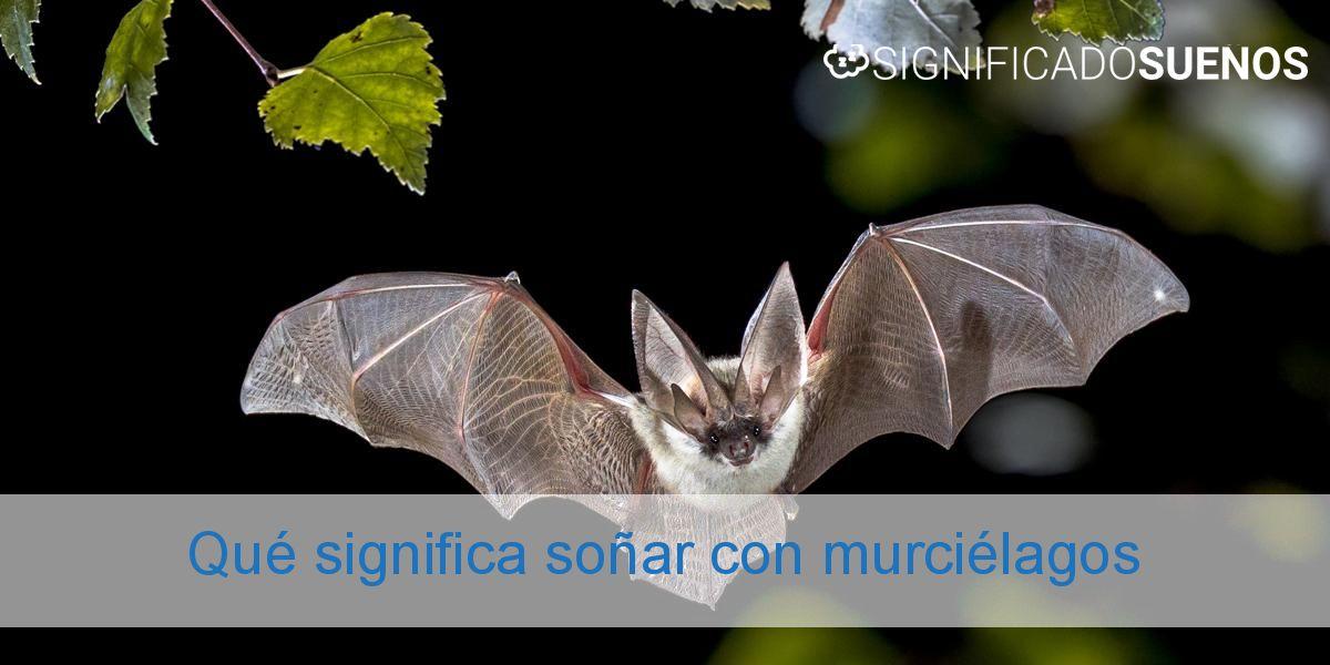 Qué significa soñar con murciélagos