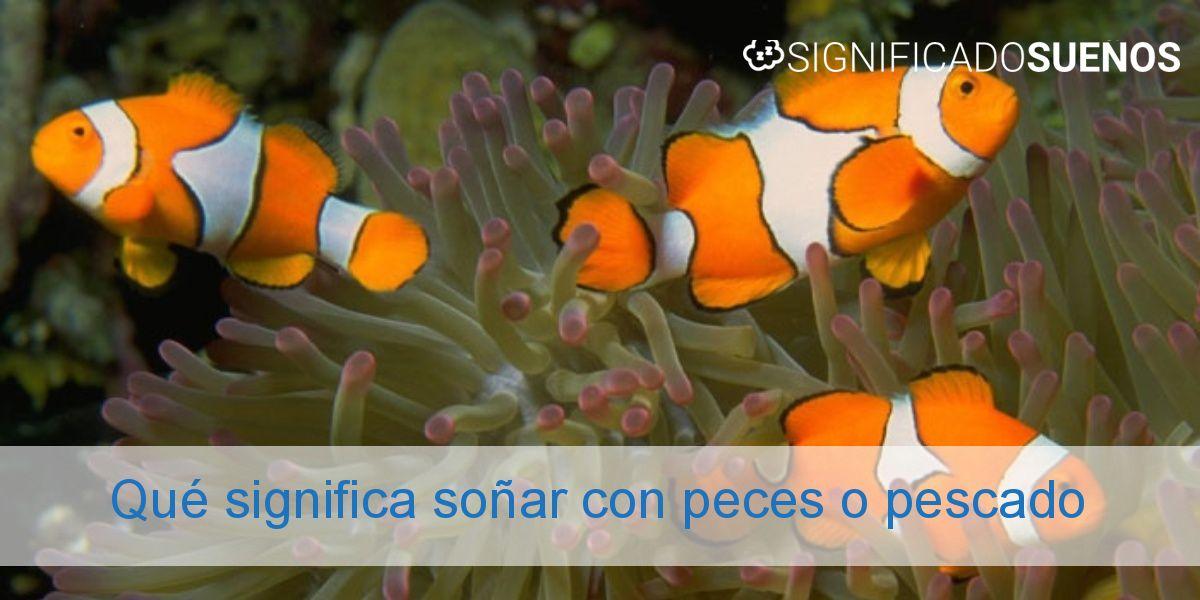 Qué significa soñar con peces o pescado