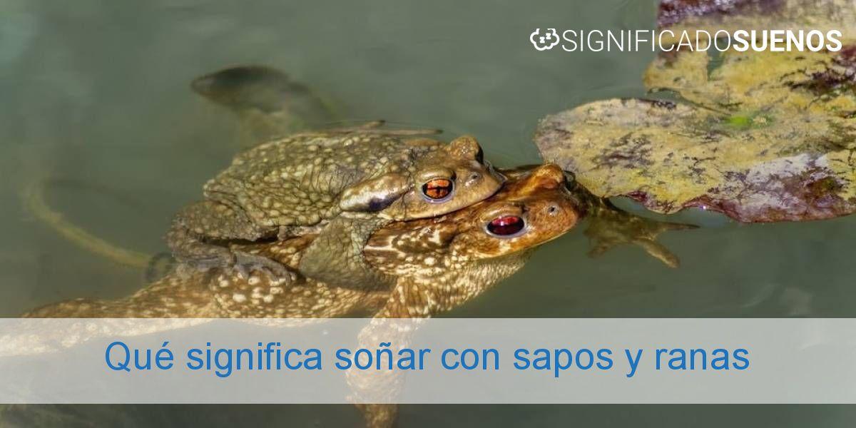 Qué significa soñar con sapos y ranas