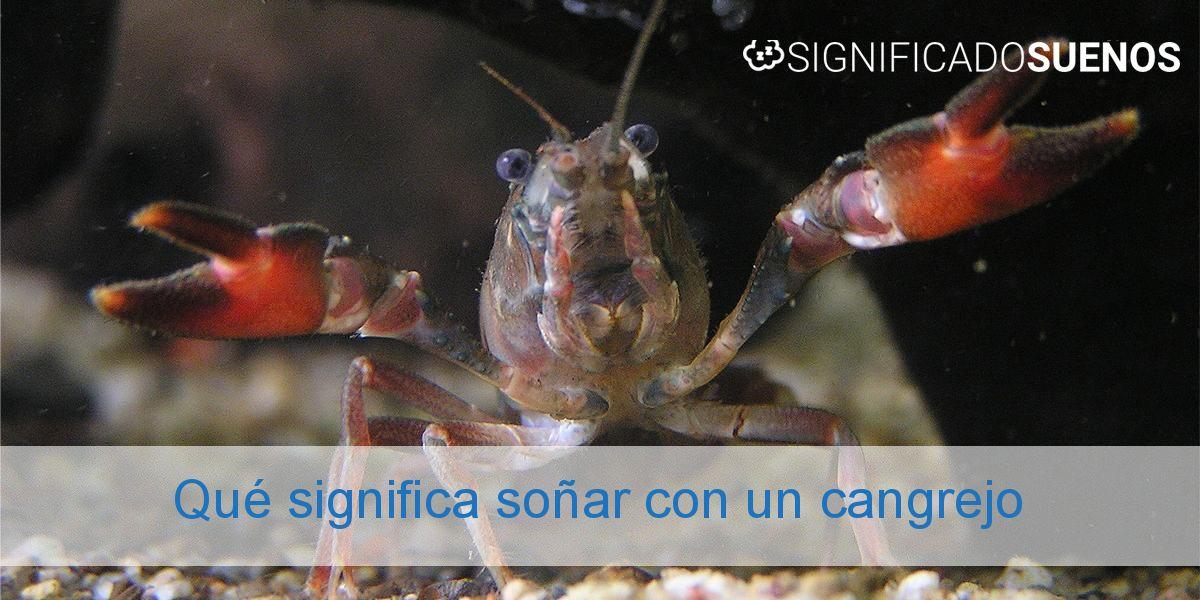 Qué significa soñar con un cangrejo