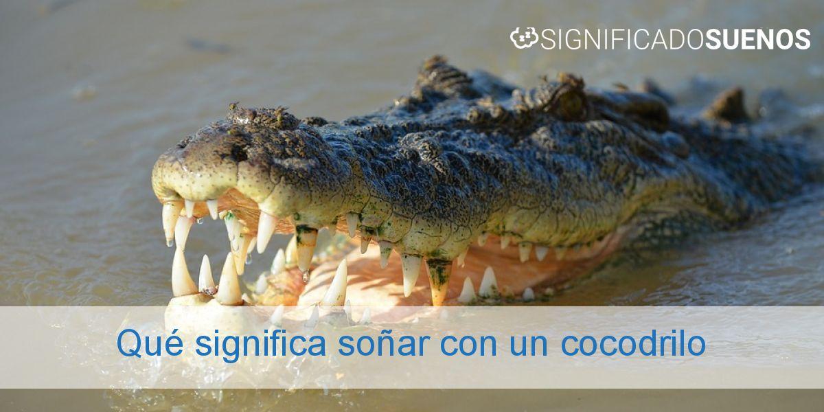 Qué significa soñar con un cocodrilo