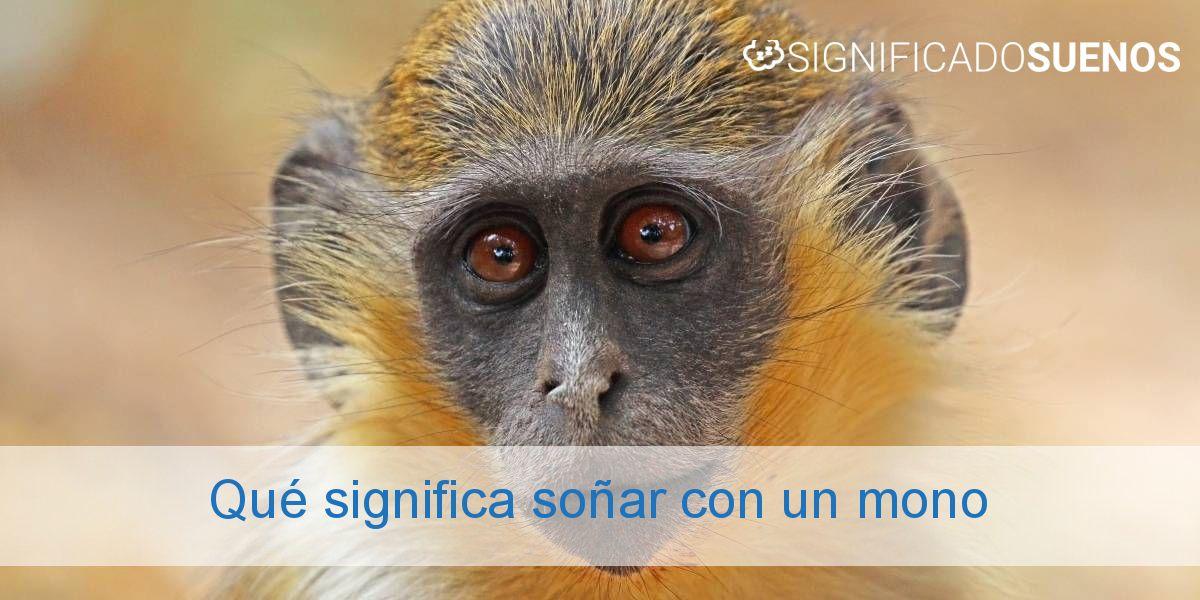 Qué significa soñar con un mono