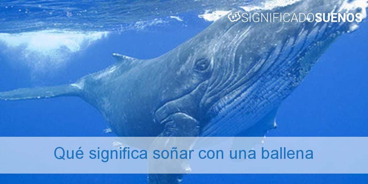 Qué significa soñar con una ballena