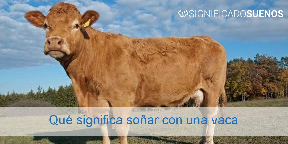 Qué significa soñar con una vaca