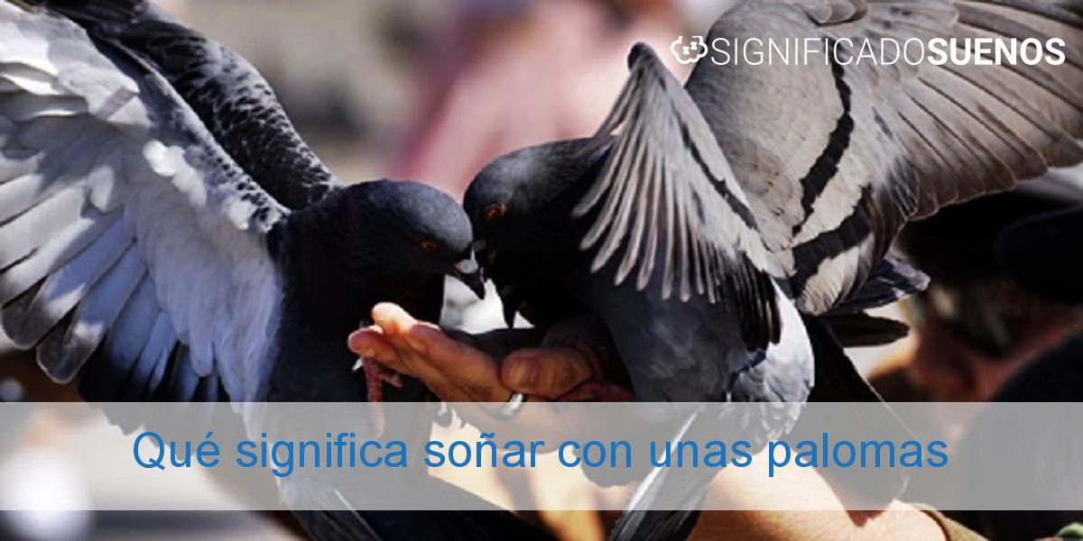 Qué significa soñar con unas palomas
