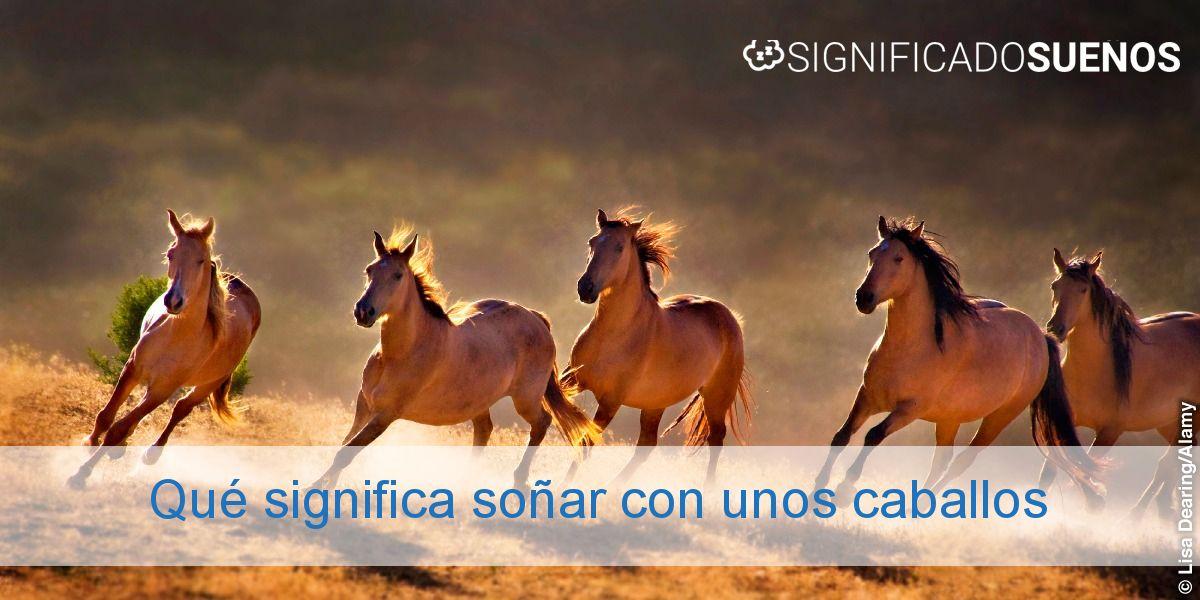 Qué significa soñar con unos caballos