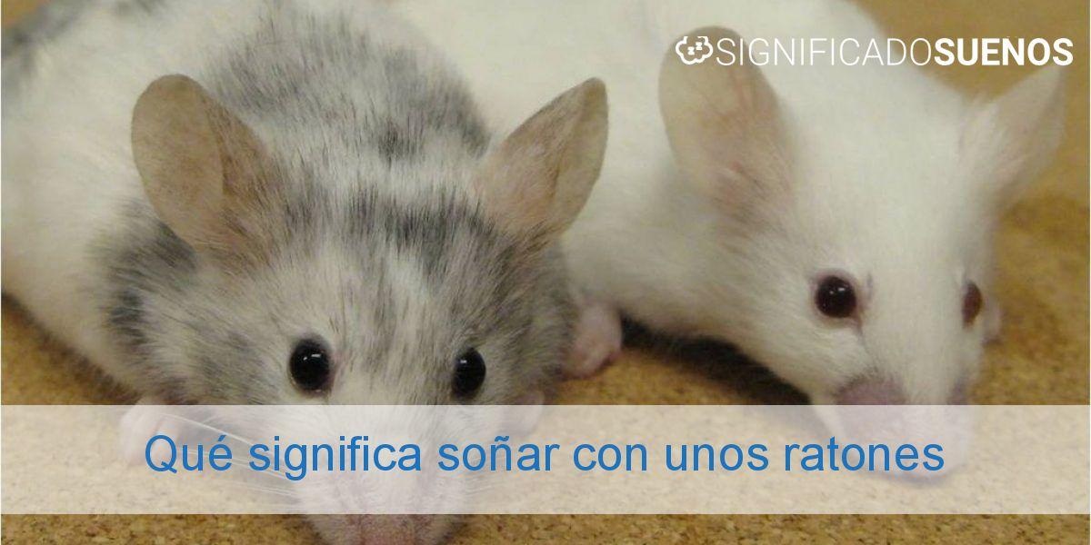 Qué significa soñar con unos ratones