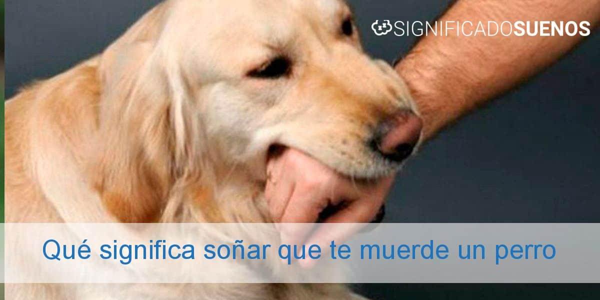 Qué significa soñar que te muerde un perro
