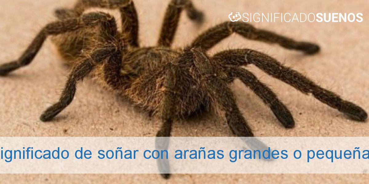 Significado de soñar con arañas grandes o pequeñas