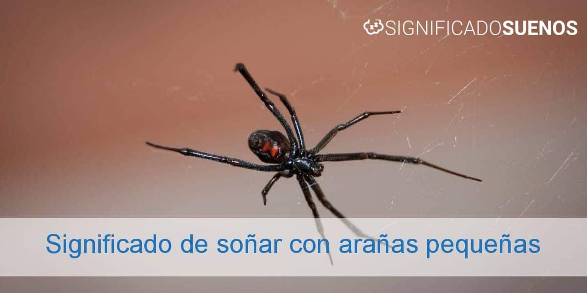 Significado de soñar con arañas pequeñas