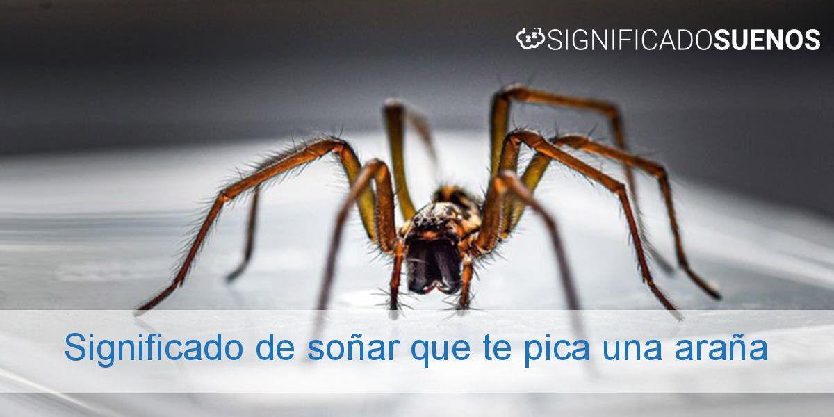 Significado de soñar que te pica una araña