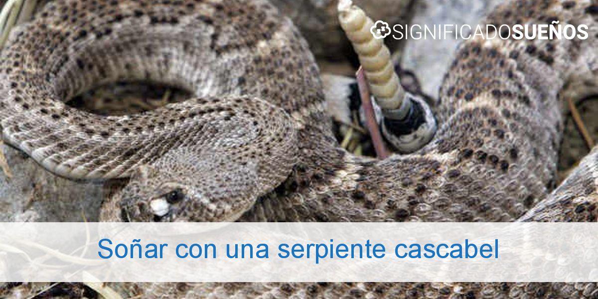 Soñar con una serpiente cascabel