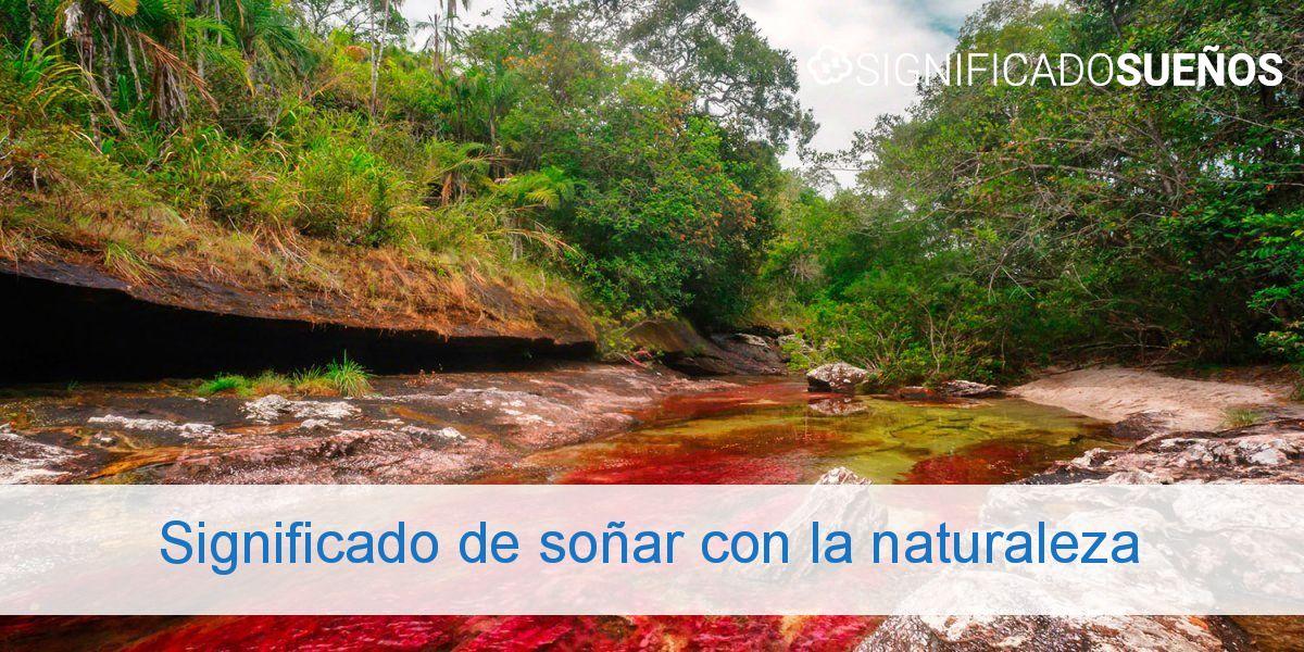Significado de soñar con la naturaleza