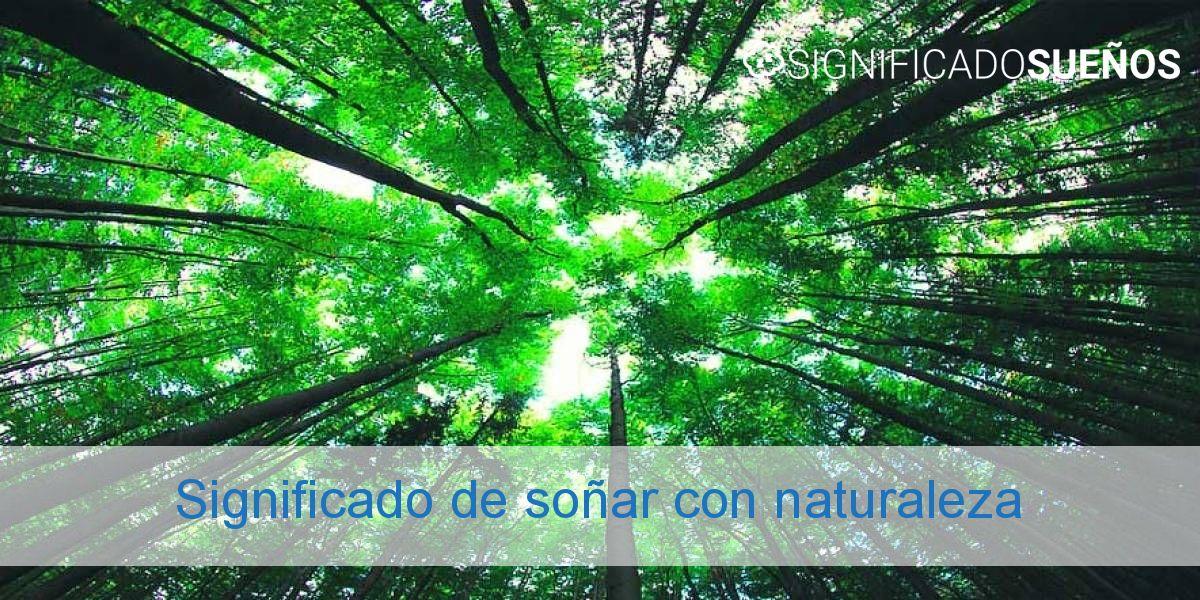 Significado de soñar con naturaleza