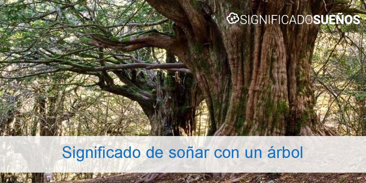 Significado de soñar con un árbol